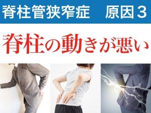 脊柱管狭窄症の三番目の原因は脊柱管の動きが悪いこと